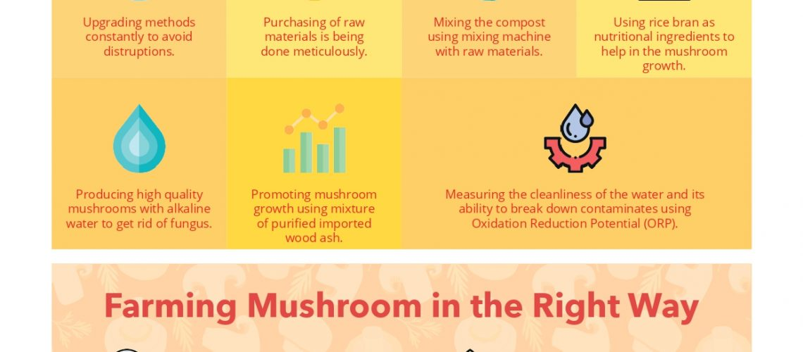 JAZ AGRO FARM - PIECING THE PUZZLES IN THE MUSHROOM CULTIVATION